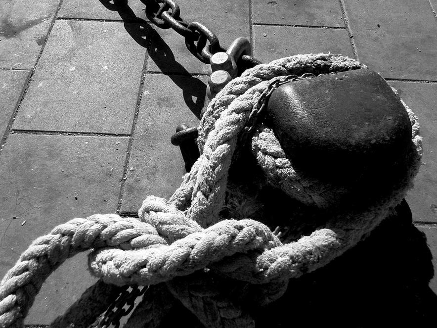Cómo cancelar o renovar tu seguro para barco