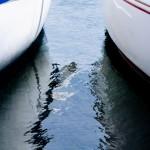 Tipos de seguros de barcos
