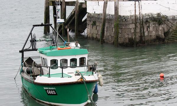 Tipos de lanchas de pesca