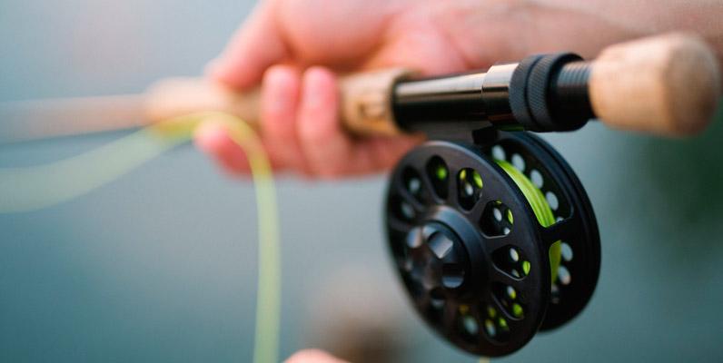 Algunas tiendas online de pesca en el mundo