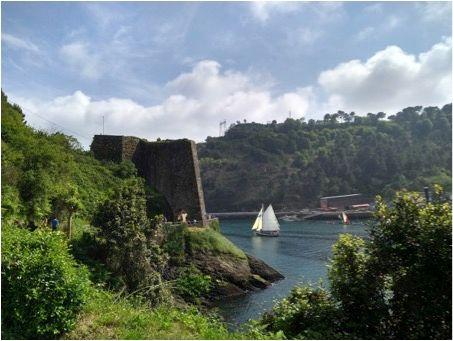 velero País Vasco