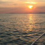 'Salvador', lectura náutica para el verano
